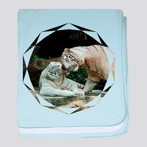 Kiss love and joy White Bengal Tigers 1 baby blank