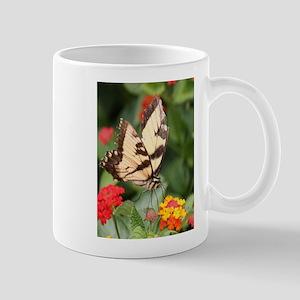 Beauty sweet and joy Tiger Swallowtail perched Bu