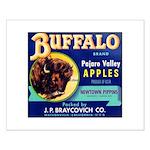 Buffalo Brand #2 Small Poster