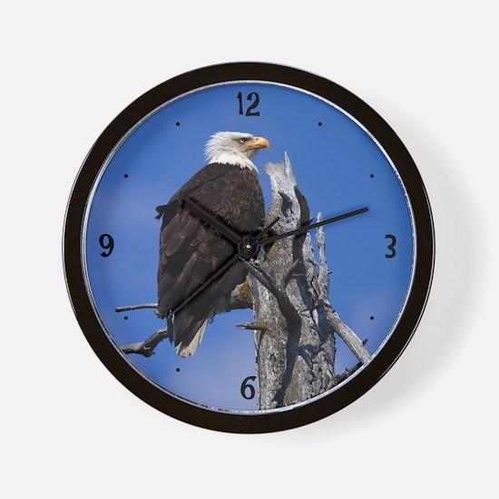 Bald Eagle 9219 Wall Clock
