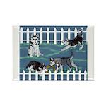 Siberian Husky Puppy Pen Rectangle Magnet (100 pac