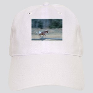 Painted pony cap