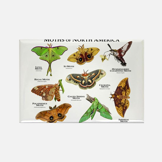 Moths of North America Rectangle Magnet