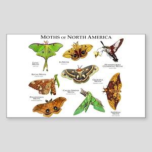 Moths of North America Sticker (Rectangle)