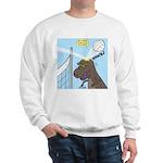 T-Rex Volleyball Sweatshirt