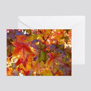 Autumn Leaves 97M Colorful Leaves Greeting Cards
