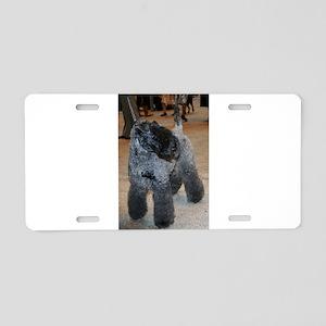 kerry blue terrier full fifth Aluminum License Pla
