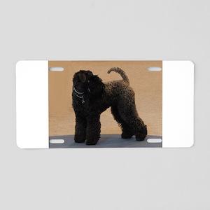 kerry blue terrier full second Aluminum License Pl