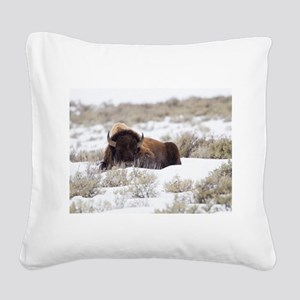 Bison Square Canvas Pillow