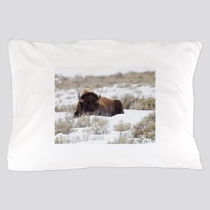 Bison Pillow Case