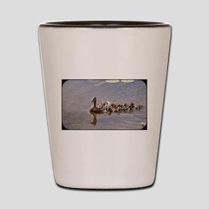 071813-18 Shot Glass