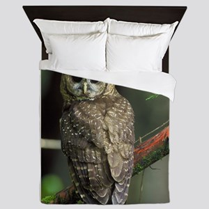 Northern Spotted Owl Queen Duvet