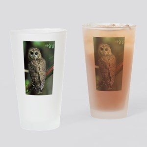 Northern Spotted Owl Drinking Glass