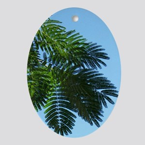 Mimosa Oval Ornament