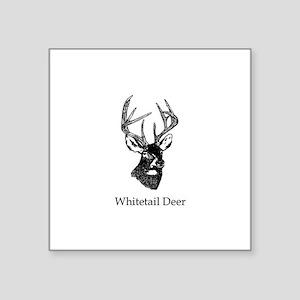 White Tailed Deer 10 Point Buck Sticker
