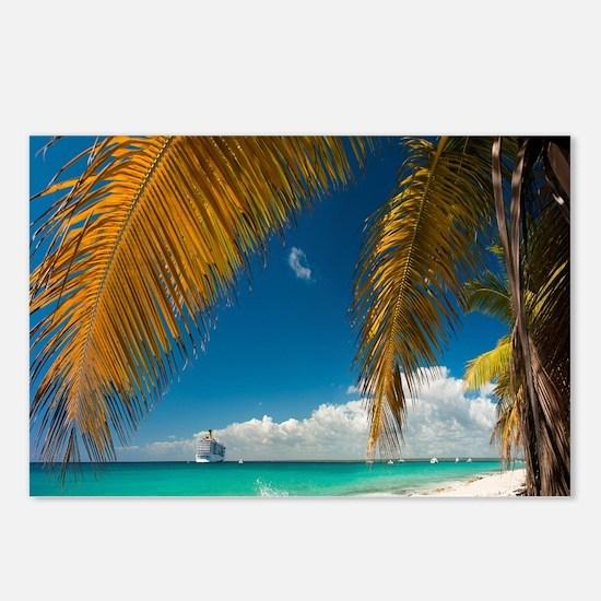 Palm trees cruise Catalina Island - Copy (3) Postc