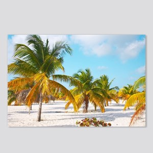 Palm tree Sirena beach Cayo Largo Postcards (Packa