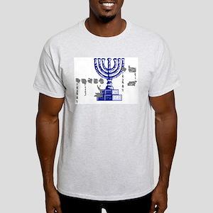 Ben Tzion Ash Grey T-Shirt