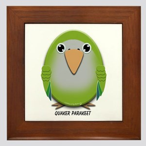 Quaker (Monk) Parakeet Framed Tile