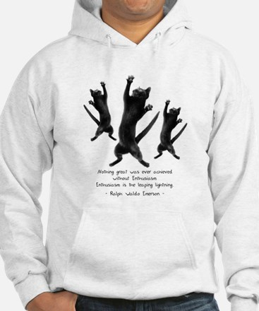 Enthusiastic Cats Hoodie