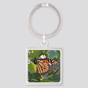 Monarch Butterfly Square Keychain