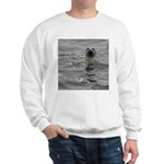 Harbor Seal Sweatshirt