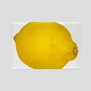 Lemon Magnets