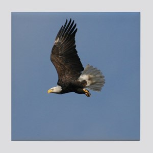 Bald Eagle on the wing, Tile Coaster