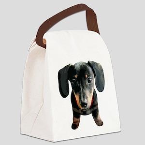 Dachshund001 Canvas Lunch Bag