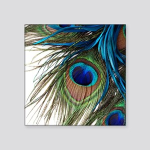 """Peacock Feathers Square Sticker 3"""" x 3"""""""