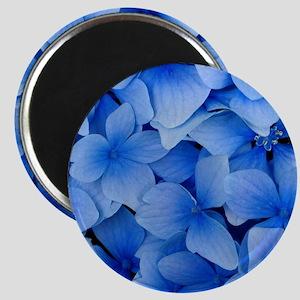 Blue Beauty Magnet