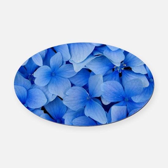 Blue Beauty Oval Car Magnet