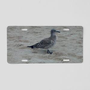 Shore Bird Aluminum License Plate