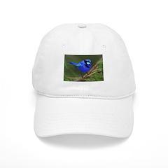 Blue Wren Baseball Cap