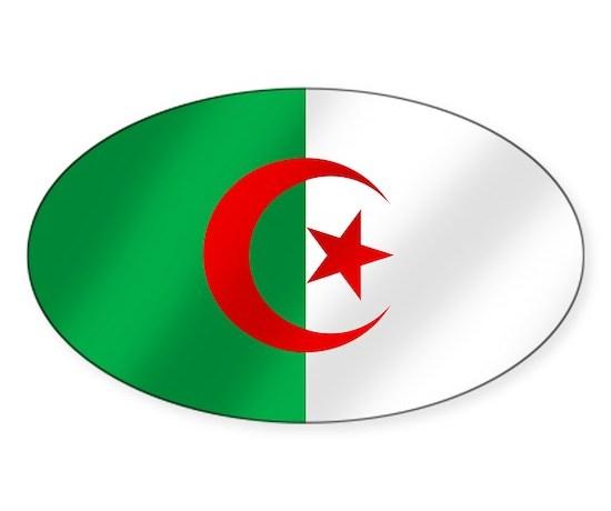 Flag of algeria sticker oval