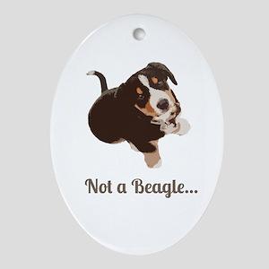 Not a Beagle - Entlebucher Mtn Dog Ornament (Oval)