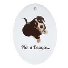 Not a Beagle - Entlebucher Mtn Dog Ornament (Oval)