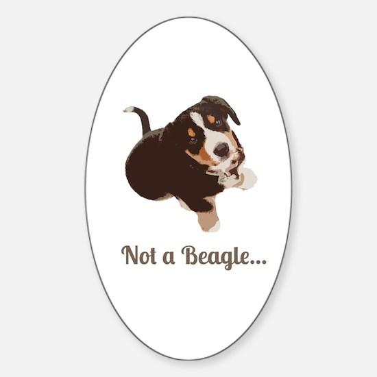 Not a Beagle - Entlebucher Mtn Dog Decal