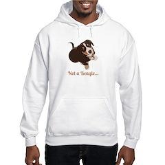 Not a Beagle - Entlebucher Mtn Dog Hoodie
