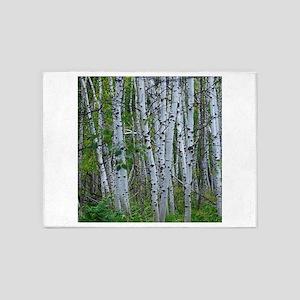 Aspen grove 5'x7'Area Rug