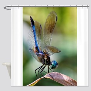 DRAGONFLY - UP CLOSE & PERSONAL Shower Curtain