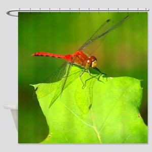 RED TROPPER DRAGONFLY Shower Curtain