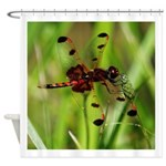 UNKNOWN DRAGONFLY Shower Curtain