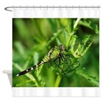 GREEN CLEARWING DRAGONFLY Shower Curtain