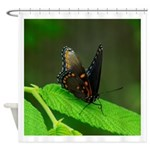 BUTTERFLY# 3 Shower Curtain