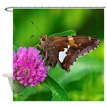 OMG Brown Butterfly Shower Curtain