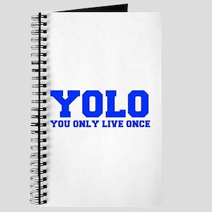 YOLO-FRESH-BLUE Journal