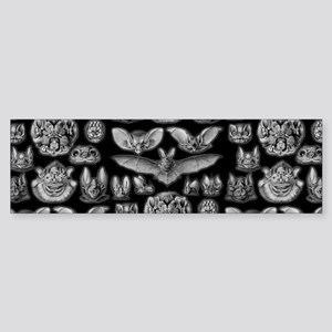 Vintage Bat Illustrations Bumper Sticker