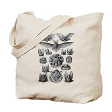 Vintage Bat Illustrations Tote Bag