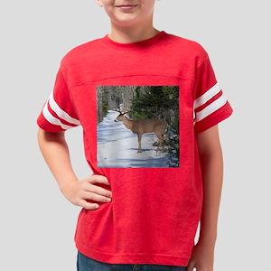 3-4.25x4 Youth Football Shirt